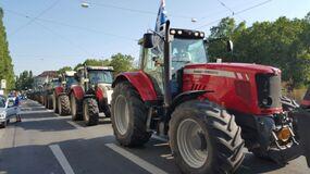 © Demonstration gegen sinkende Milchpreise