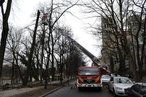 Sturm in München Baum umgefallen, © Foto der Berufsfeuerwehr München