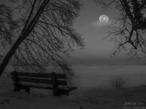 Der Starnberger See im dunklen Nebel, © Der Starnberger See im dunklen Nebel - Bild: Janusz Lubojansky - Behind the Lens