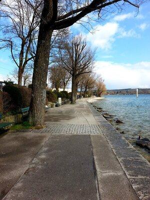 © Auch am Starnberger See wird es so langsam Frühling Bild: Agnes aus München