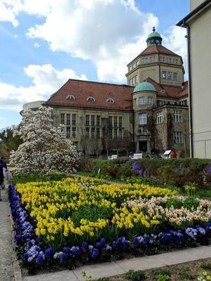 Frühling, Botanischer Garten, © Frühlingsaufnahmen aus dem Botanischen Garten. Bild: Agnes aus München