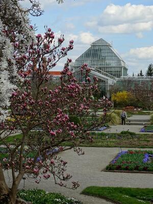 Gewächshaus, Botanischer Garten, © Das Gewächshaus des Botanischen Gartens. Bild: Agnes aus München