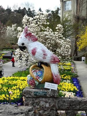 Botanischer Garten, Vogel, © Ein riesen Vogel ist zu Gast im Botanischen Garten. Bild: Agnes aus München