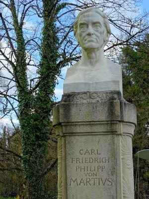 Carl Friedrich, Botanischer Garten, © Mit strengen Blick passt er auf den Garten auf. Bild: Agnes aus München