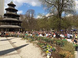 Chinesischer Turm am Englischen Garten München Frühlingswetter, © Flanieren am chinesischen Turm mitten im Englischen Garten. Dafür ist München bekannt Foto: Redaktion