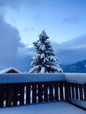 Erster Schnee Balkon und Tanne mit Schnee bedeckt, © Elmar Müller