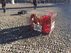 peta aktion tiere sind keine weihnachtsgeschenke demo