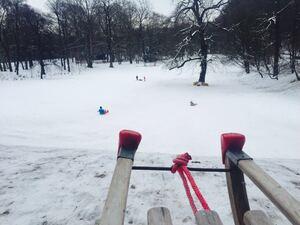 schlitten in schneelandschaft, © Schlittenhügel im Westpark