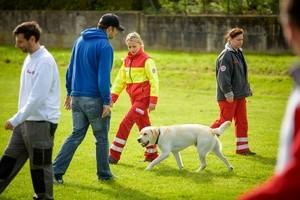 Johanniter, Rettungshund, Hund, © Foto: Saskia Rosebrock