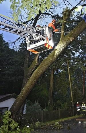 Die Feuerwehr musste mit schwerem Gerät ausrücken und den Baum in München sichern., © Foto der Berufsfeuerwehr München