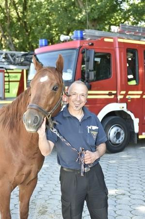 Feuerwehrmann steht mit einem Pferd vor Feuerwehrauto, © Branddirektion München