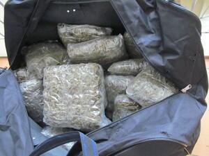Marihuana im Wald gefunden, © Foto: Polizei