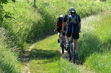 Am Tegernsee kann man tolle Radtouren machen, © Symbolbild