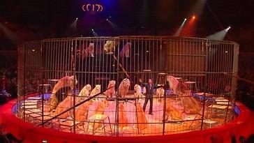 2. Winterprogramm im Circus Krone