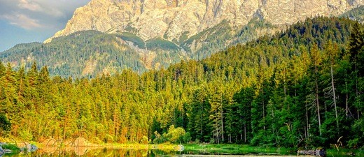 Alpen im Raum München, © Grüne Landschaft vor den Alpen Foto:  Dirk Schiff/Portraitiert.de