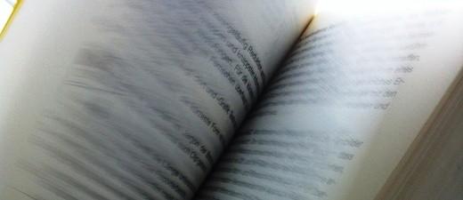 Buch wird durchgeblättert