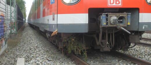 Gefällter Baum, S-Bahn, Gleise, © Gefällter Baum stürzt auf S-Bahn Gleise - Symbolfoto
