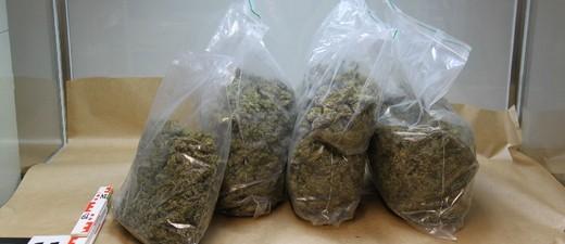 Marihuana, Drogen, © Symbolbild.