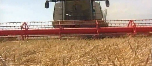 Bauern, Bauer, Landwirtschaft, TTIP, Agrar, Ernte