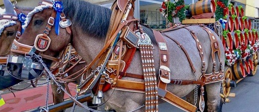 Pferdekutsche vor dem Einzug der Wiesnwirte