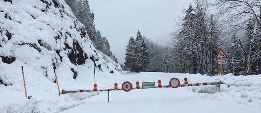 gesperrte Strassen und umgeknickte Bäume wegen starken Schneefällen, © Foto: Straßenbauamt Weilheim - Symbolbild