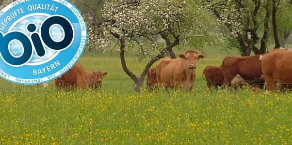 © Bayerische Bio-Produkte sollen ein eigenes Siegel bekommen.