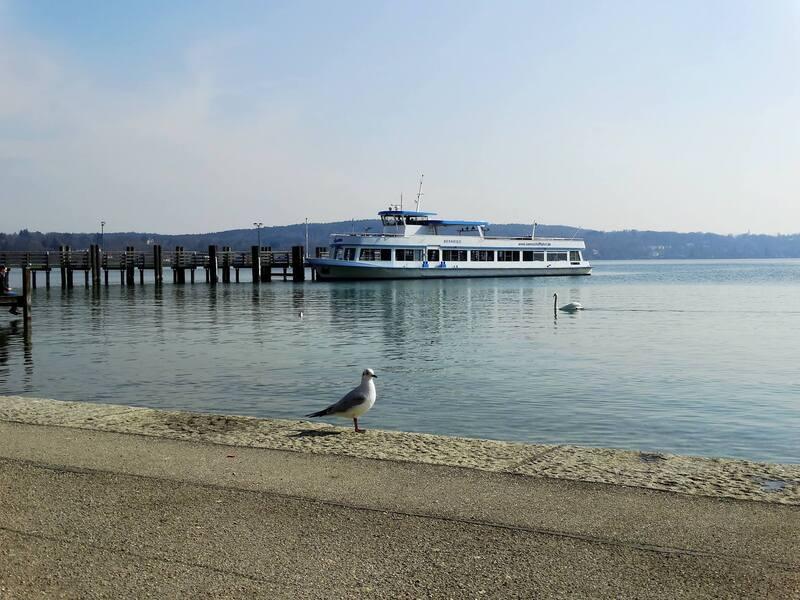 Möwe steht an der Uferpromenade vom Starnberger See, © Da durfte wohl jemand nicht mit auf die Bootstour Bild: Agnes aus München