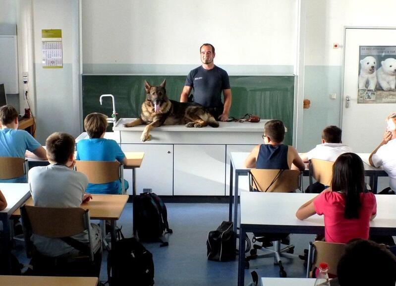 Der Spührhund im Unterricht in München, © Der Spührhund für alle gut sichtbar - Foto: Polizei
