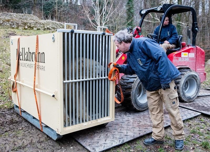© Nobby in seiner Transportbox- Foto Marc Müller/Tierpark Hellabrunn