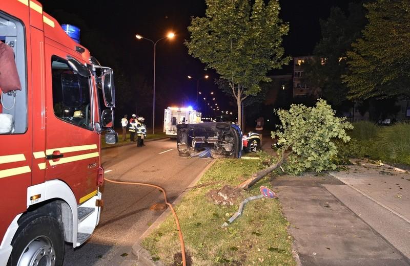 unfallort lerchenauerstraße mit umgefallenen auto und umgestürzten Baum, © Feuerwehr München