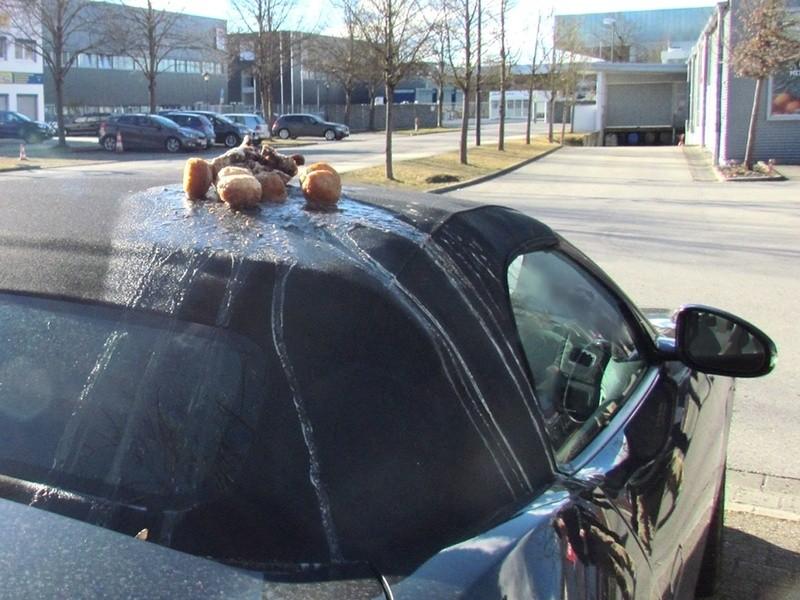In Pöring entdeckte ein Cabrio-Fahrer einen Entenbraten auf dem Dach seines Wagens.