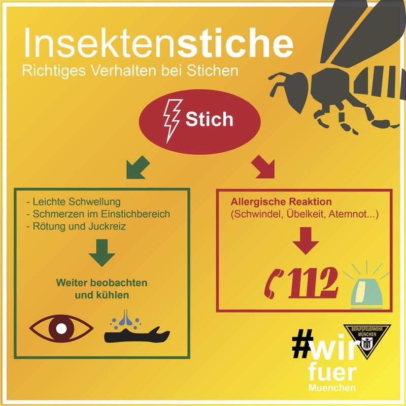 Das Verhalten bei Stichen, © Grafik: Berufsfeuerwehr München