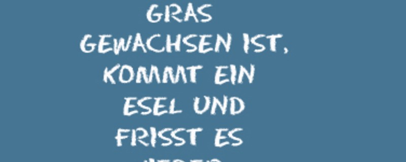 Der münchen.tv Spruch des Tages   münchen.tv