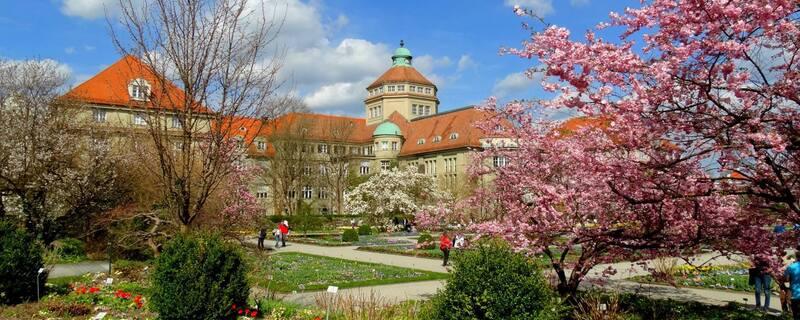 Botanischer Garten, Frühling, © Sonnenschein im Botanischen Garten. Bild: Agnes aus München