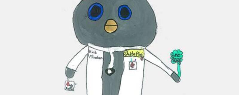 Doktor Pingi das neue Hauner