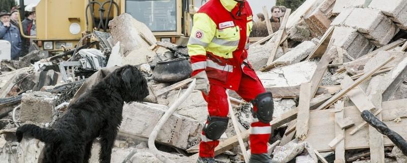 Johanniterhelferin und ein Rettungshund durchsuchen einen Trümmerhaufen , © Foto: Die Johanniter