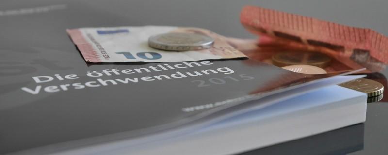 Schwarzbuch über Steuerverschwendung, © Schwarzbuch über Steuerverschwendung