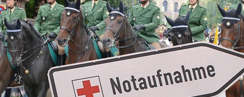 Polizeipferd von Dobermann attackiert, © Symbolbild