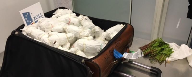 Der Zoll am Münchner Flughafen hat Khat beschlagnahmt, © 450 Kilogramm Khat beschlagnahmt. Rechte: BFV/Zoll