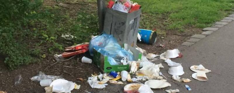 Grillen: Immer wieder quillen die Mülleimer über. , © überquellende Mülleimer werden zunehmend zum Problem. Foto: Bine Nicole Pernsteiner