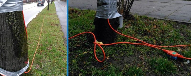 orangene Kabel wegen Geothermie-Messung, © Mit diesen Kabeln werden die sogenannten Seismik-Messungen durchgeführt.