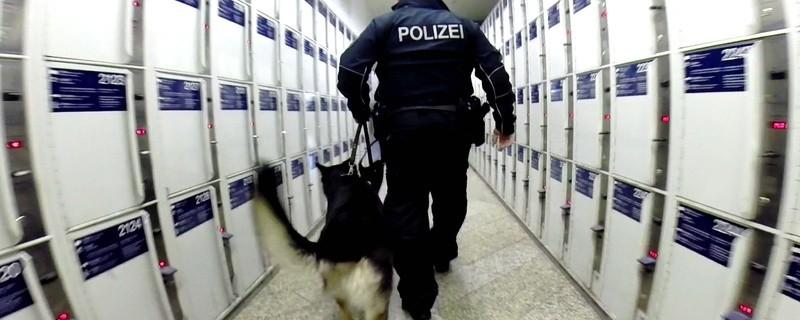 Bundespolizist mit Hund, © Foto: Bundespolizei