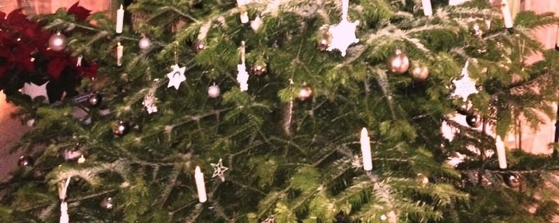 Weihnachten 2016: Christbaum, © Weihnachten 2016: Christbaum