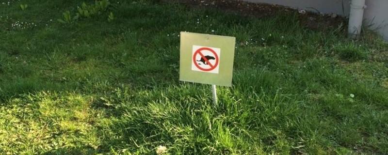 Schild Hundehaufen , © Symbolfoto