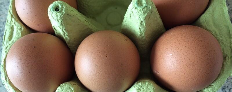 Ei, Eier, Hühnerei, Huhn, Schale, Eierschale,