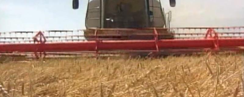 Bauern, Bauer, Landwirtschaft, TTIP, Agrar, Ernte , © Bäuerliche Familienbetriebe sollen mehr unterstützt werden.