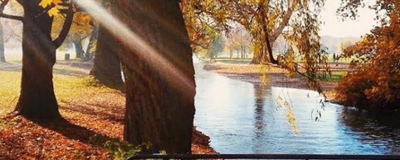 Herbst im Englischen Garten in München
