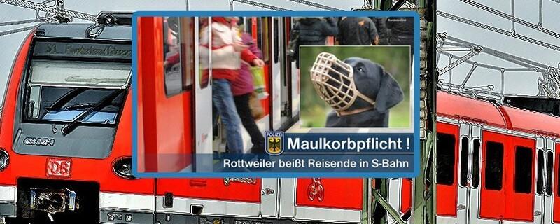 Hund mit Maulkorb in Münchner S-Bahn