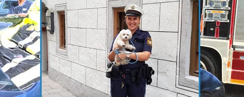 Eine Polizistin hält den Hund auf dem Arm, der aus dem Auto befreit wurde.