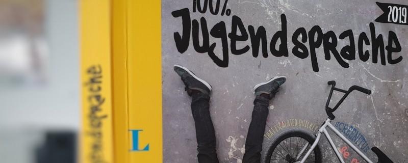 Das Langenscheidt Buch 100% Jugensprache 2019
